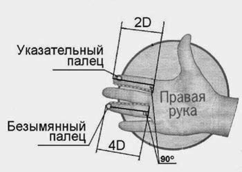 p12_pic1.jpg