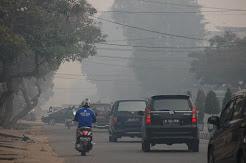 Potret Dampak Kabut Asap di Jambi, Dari Diliburkannya Sekolah Hingga Lumpuhnya Transportasi Sungai