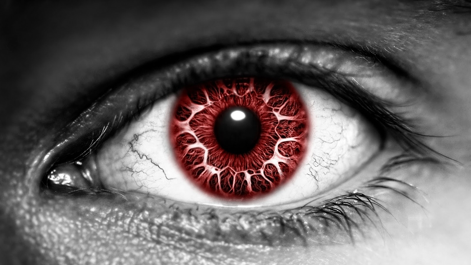 PicturesPool: Beautiful Eyes Wallpapers