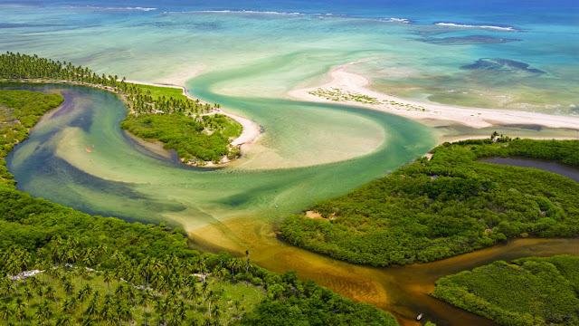 Tatuamunha River estuary, Brazil (© Luciano Candisani/Minden Pictures) 586