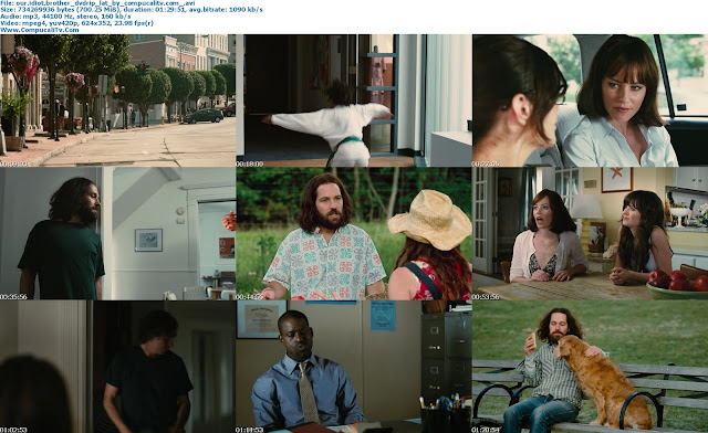 Our Idiot Brother 2011 DVDRip Español Latino Descargar 1 Link