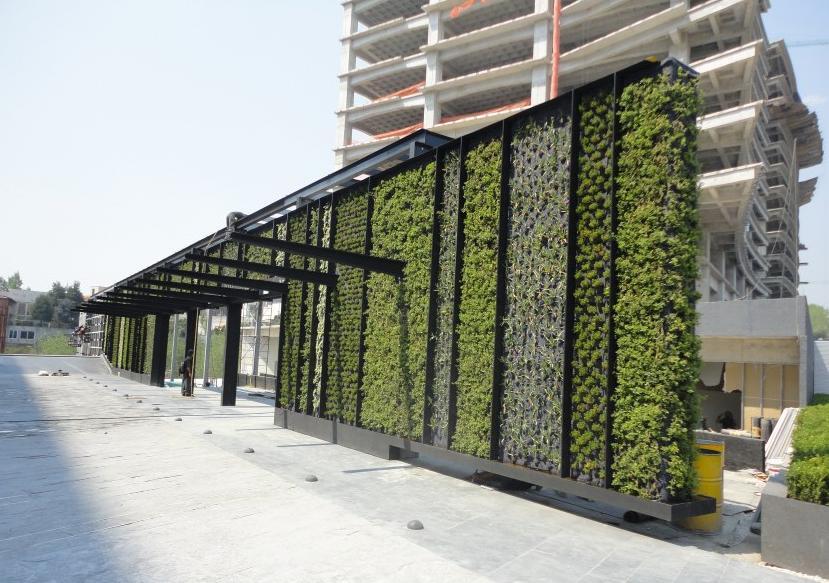 Azoteas verdes y jardines verticales casa haus decoraci n for Jardines verdes verticales