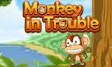 Puanlı Maymun ve Şempanze