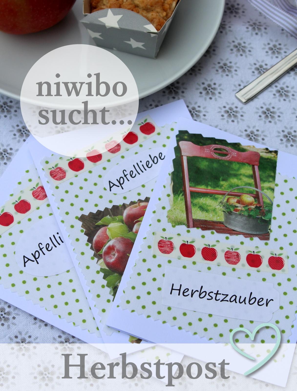 niwibo sucht...