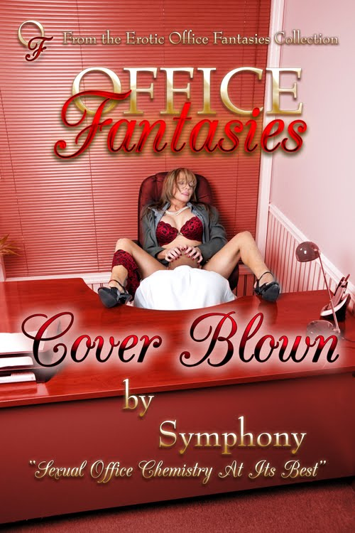 Office Fantasies, a hot and steamy collection of erotic stories between two ...