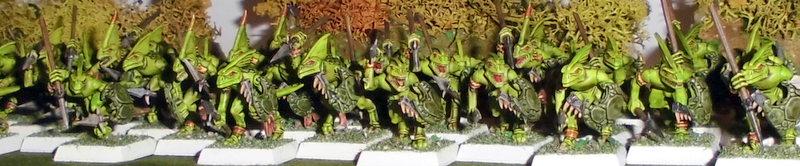 Armée Warhammer Battle 3-CIMG1288