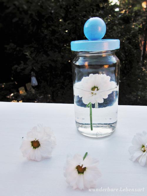 Geschenkidee:Blumen im Glas