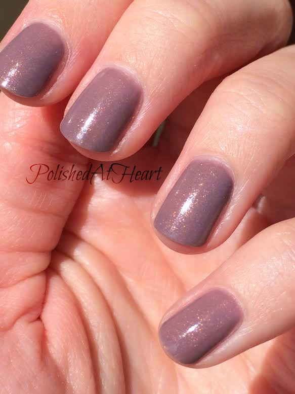 inexpensive taupe shimmer