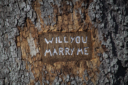 Aunt Bee's House...: Will you marry me