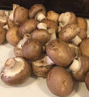 Dehydrating mushrooms, making mushroom powder, how to use mushroom powder, how to us dehydrated mushrooms,