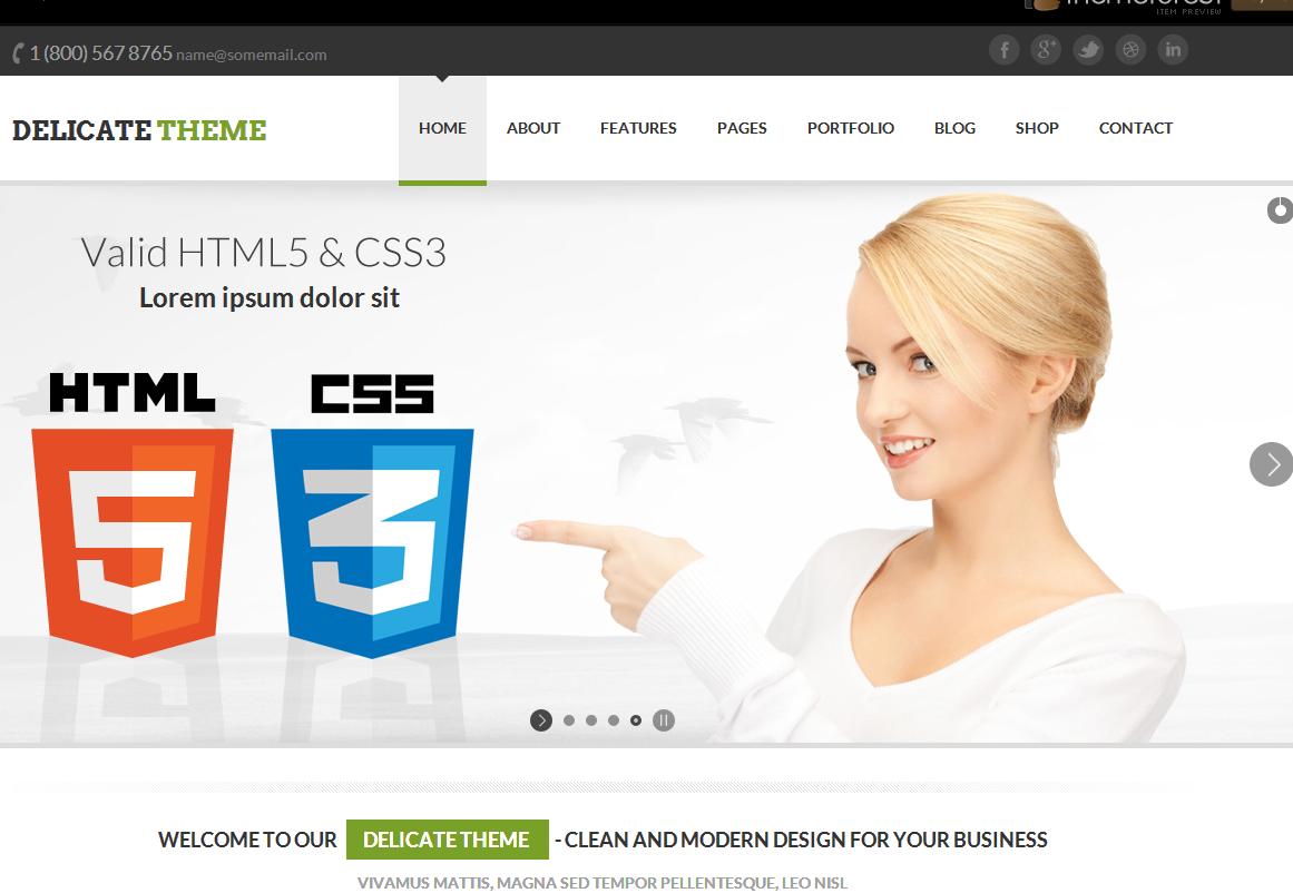 delicate responsive multipurpose html5 template free download