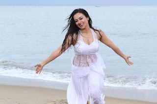 sana khan  stills in gajjala gurram movie(2).JPG