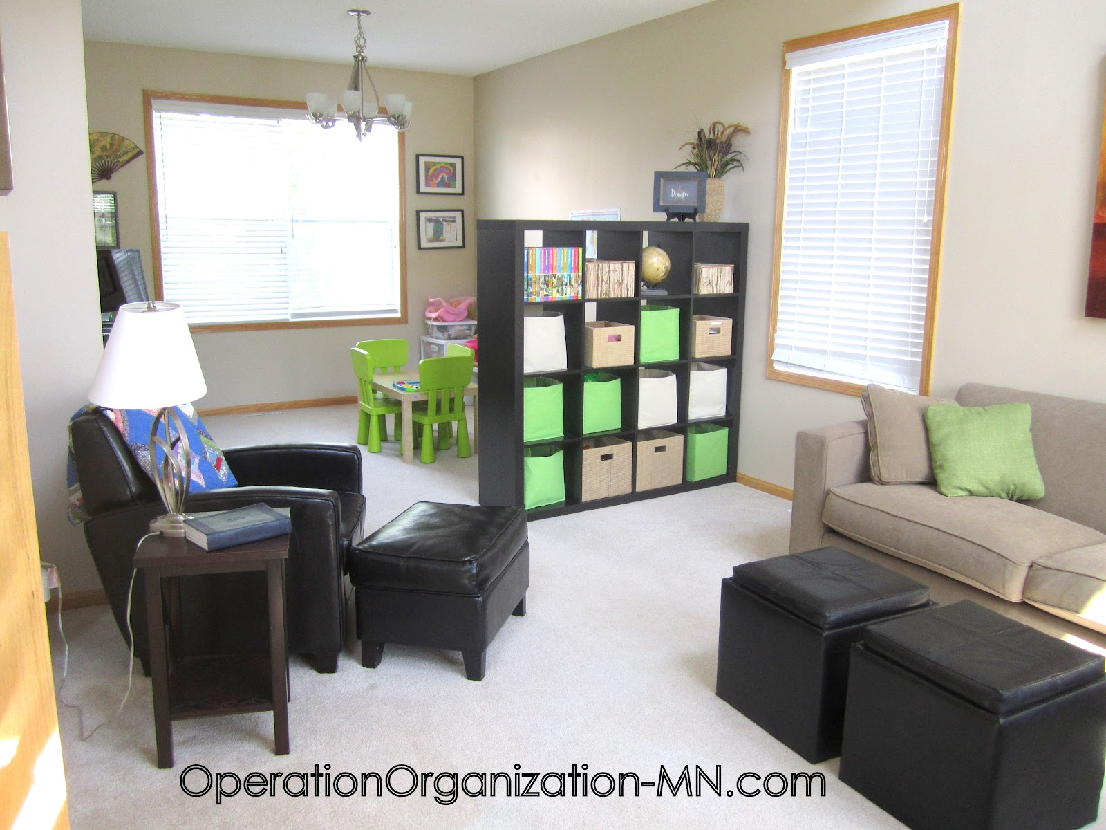 Operation organization professional organizer peachtree for Living room organization furniture