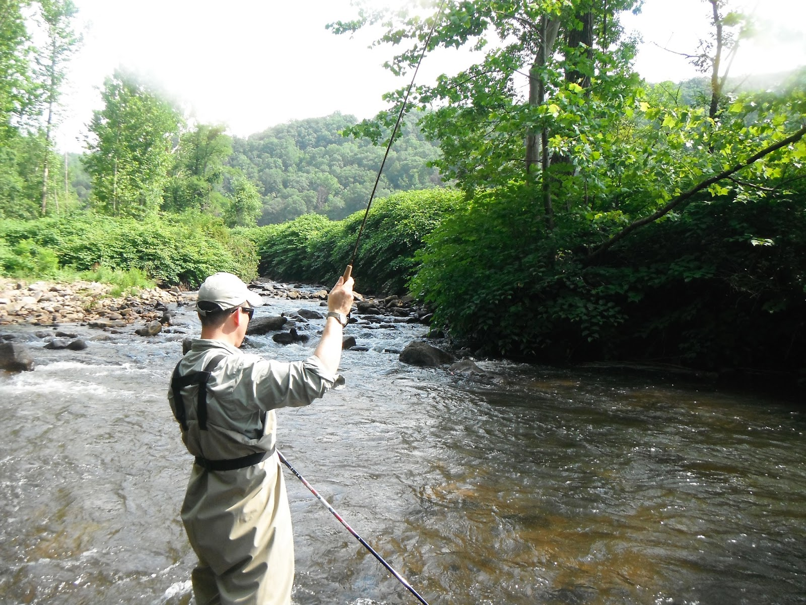 Western maryland fly fishing 2013 for Md trout fishing