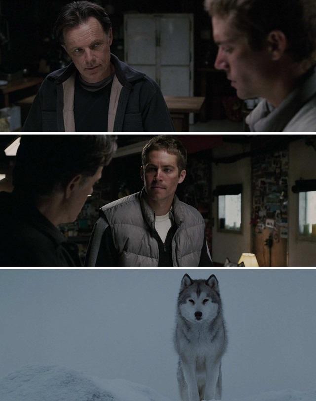 Kutup Macerası (2006) Film indir