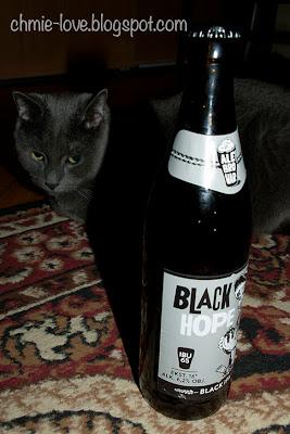 Black Hope, black IPA AleBrowar, kot rosyjski niebieski