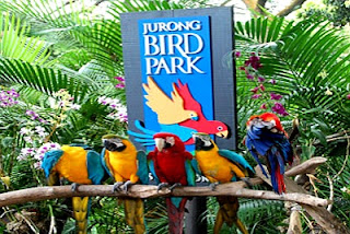 Places Jurong Bird Park
