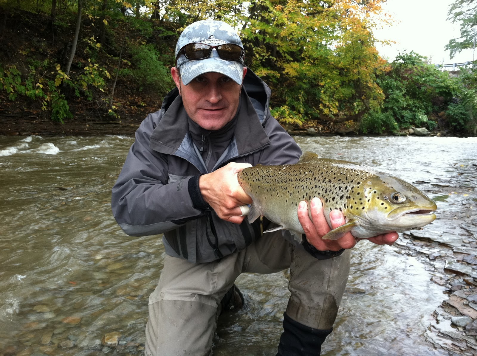 North western pennsylvania fly fishing october 2011 for Steelhead fishing pa