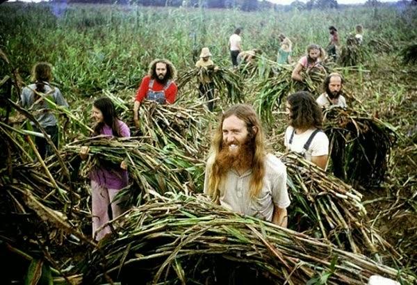 Amerika'daki Hippi Komünler, 70'ler