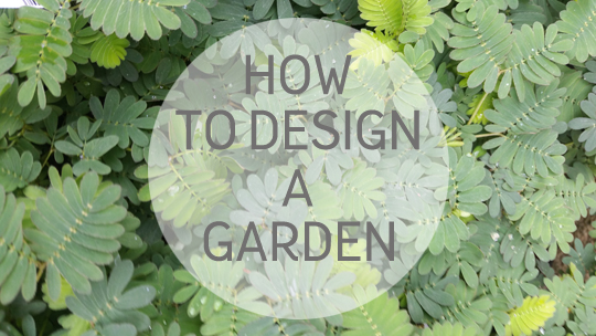 How To Design A Garden. During My Life I Have Had All Manner Of Outside  Space From Tiny Dark Courtyards To Long Thin Gardens And Sometimes None At  All.