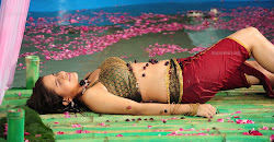Actress sheena shahabadi nandeeswarudu posters