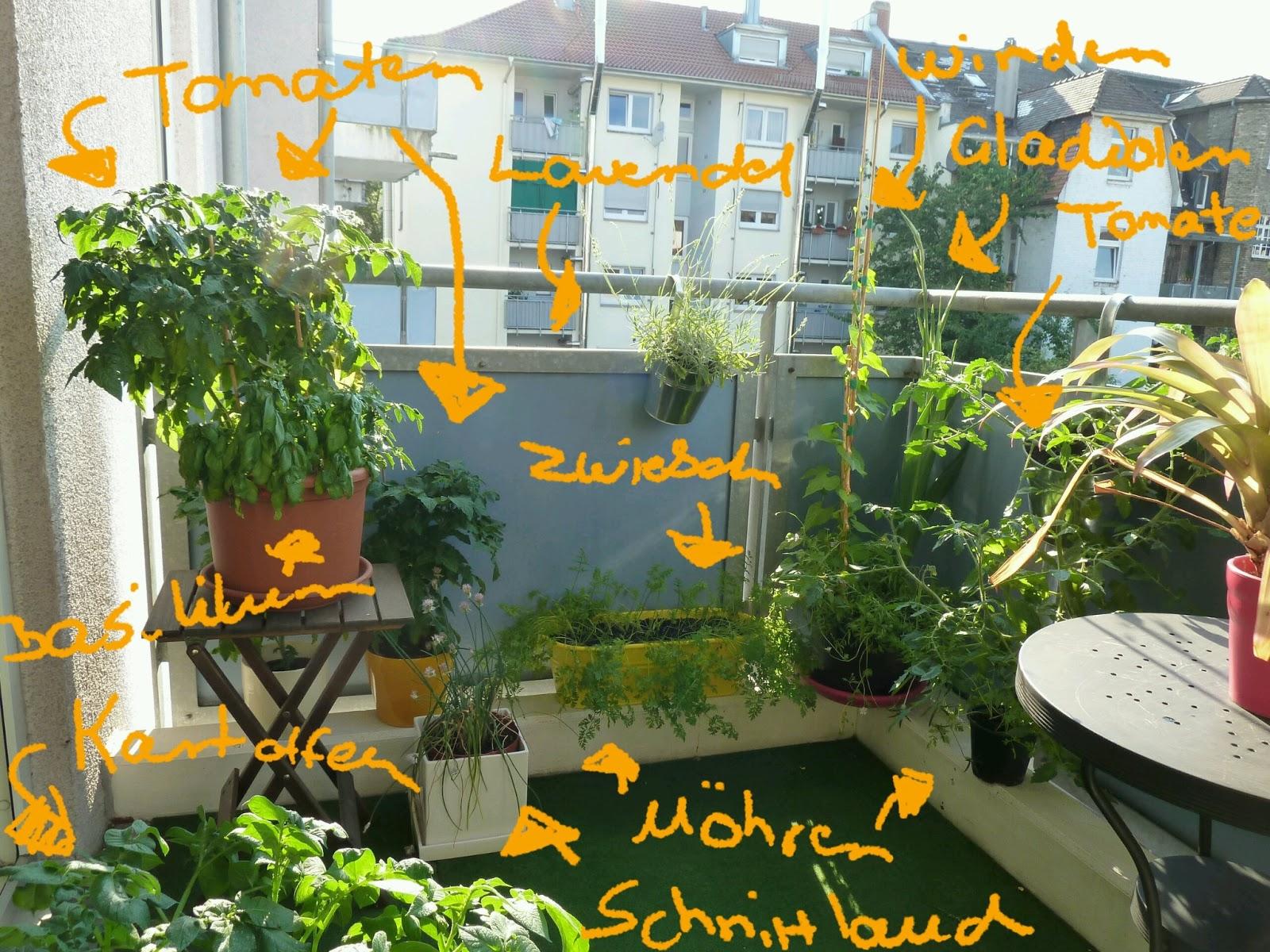 Gemüse Auf Dem Balkon : gem se naschen der balkon ~ Lizthompson.info Haus und Dekorationen