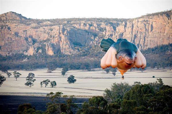 Foto Unik Balon Monster Raksasa di Langit Australia