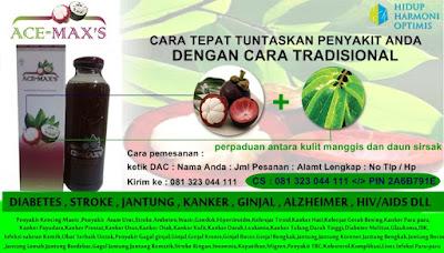 pengobatan herbal infeksiusus