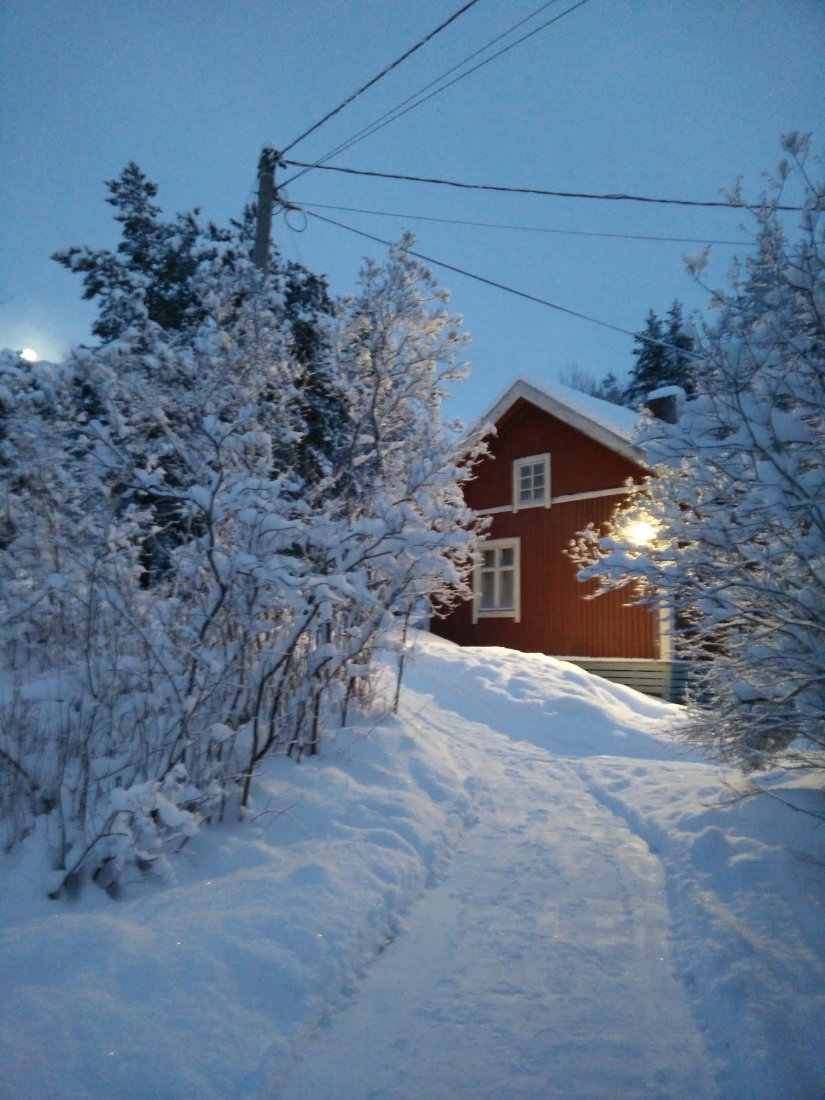 Talvinen latumaja