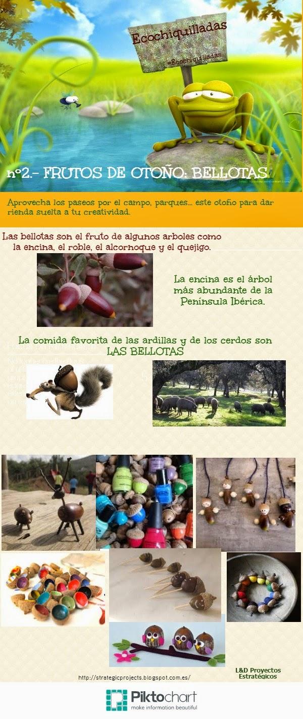 #Ecochiquillada nº2