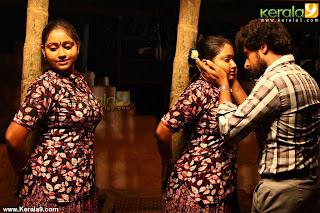 Hot Navel Show S In Saree From Parankimala Malayalam Movie