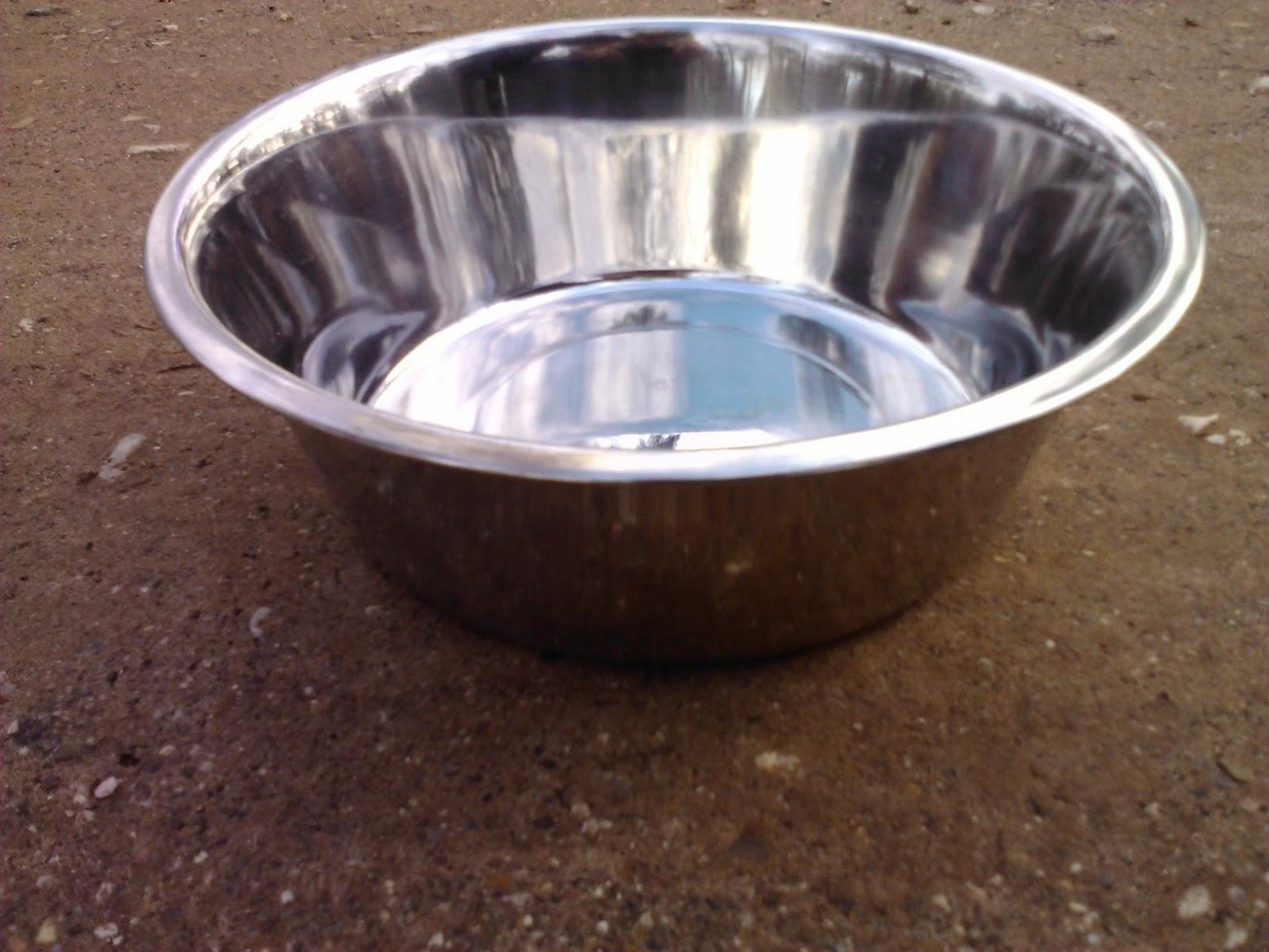 Matt Of All Trades: Dog's Water Bowl Is Fire Hazard