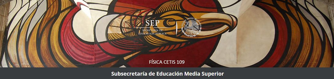 FISICA CETIS 109
