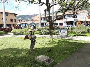 Alcaldía de Mérida limpió y desmalezó Plaza Bolívar de La Parroquia