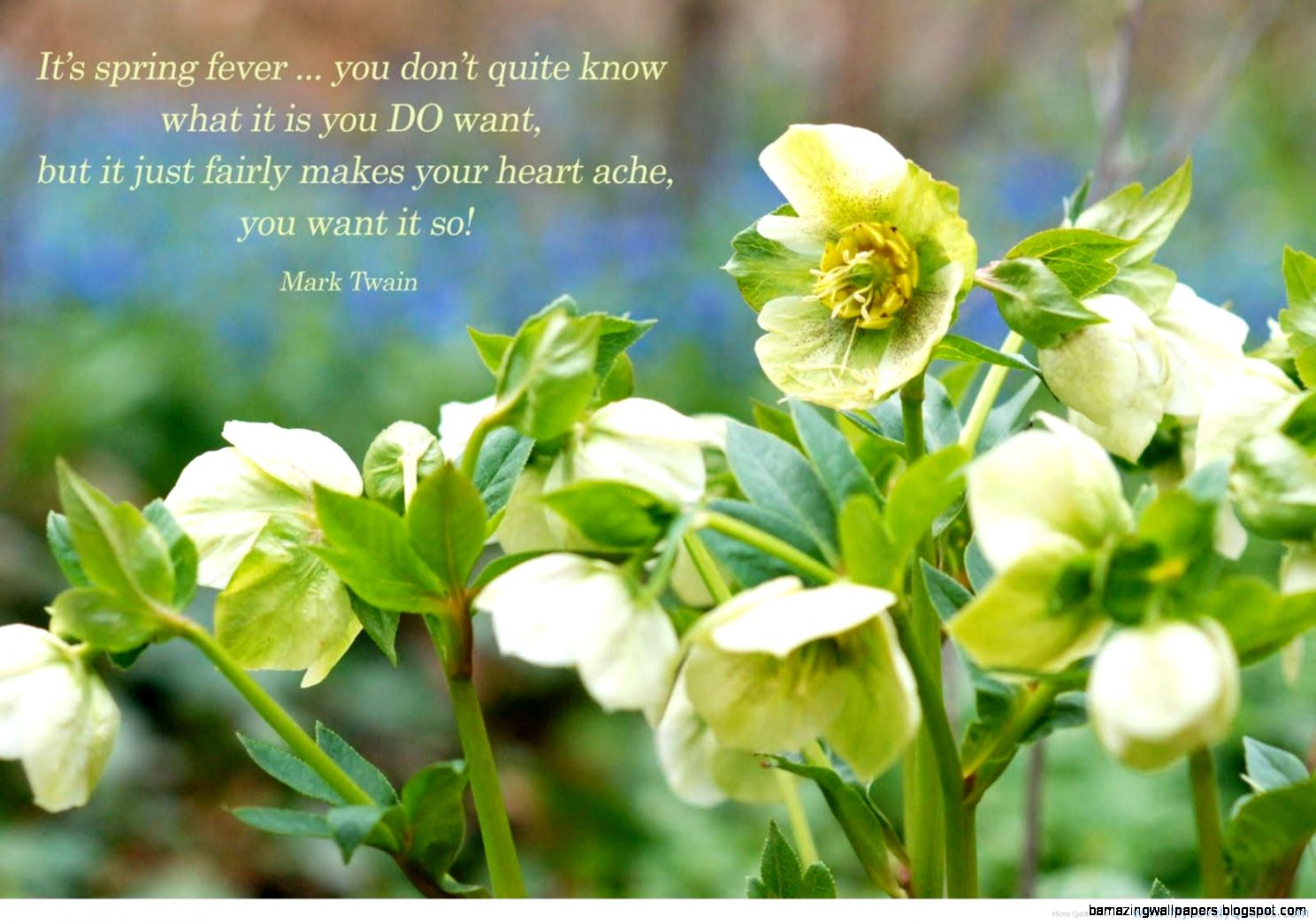 Spring Quotes QuotesGram