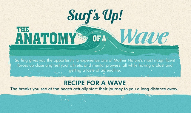 Surfs Up The Anatomy Of A Wave Infographic Visualistan