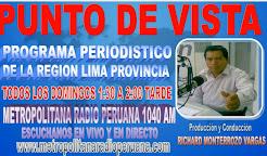 PUNTO DE VISTA