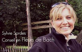fleurs-de-bach-31.blogspot.com