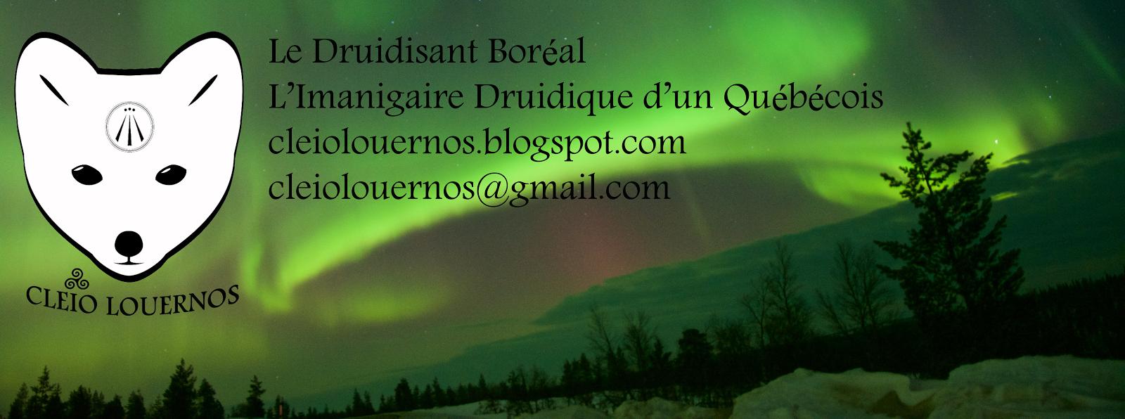 L'Imaginaire Druidique d'un Québécois