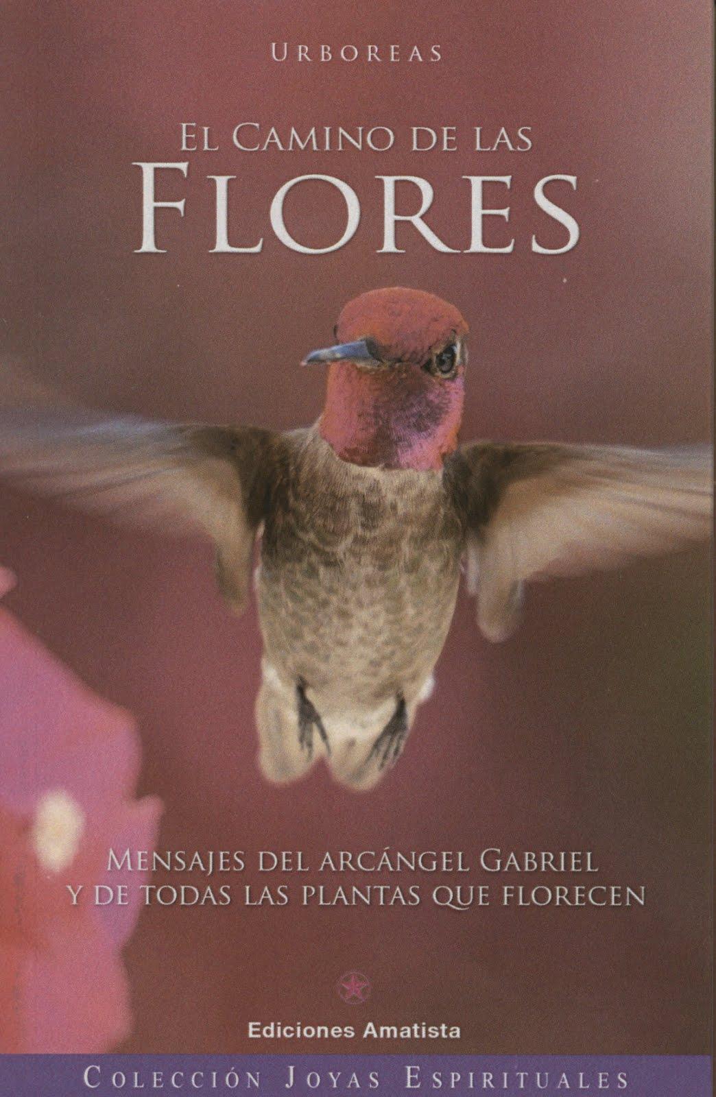 Del ángel Gabriel y las plantas que florecen: