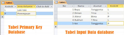 Tabel primary key, Tabel input database