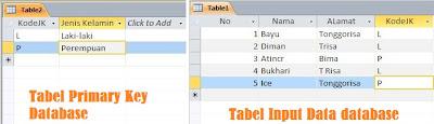 Tabel primary key, Tabel input database