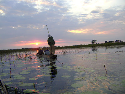 Zachód słońca na Okawango