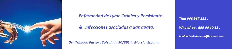 Lyme Crónico y su complejo de infecciones asociadas