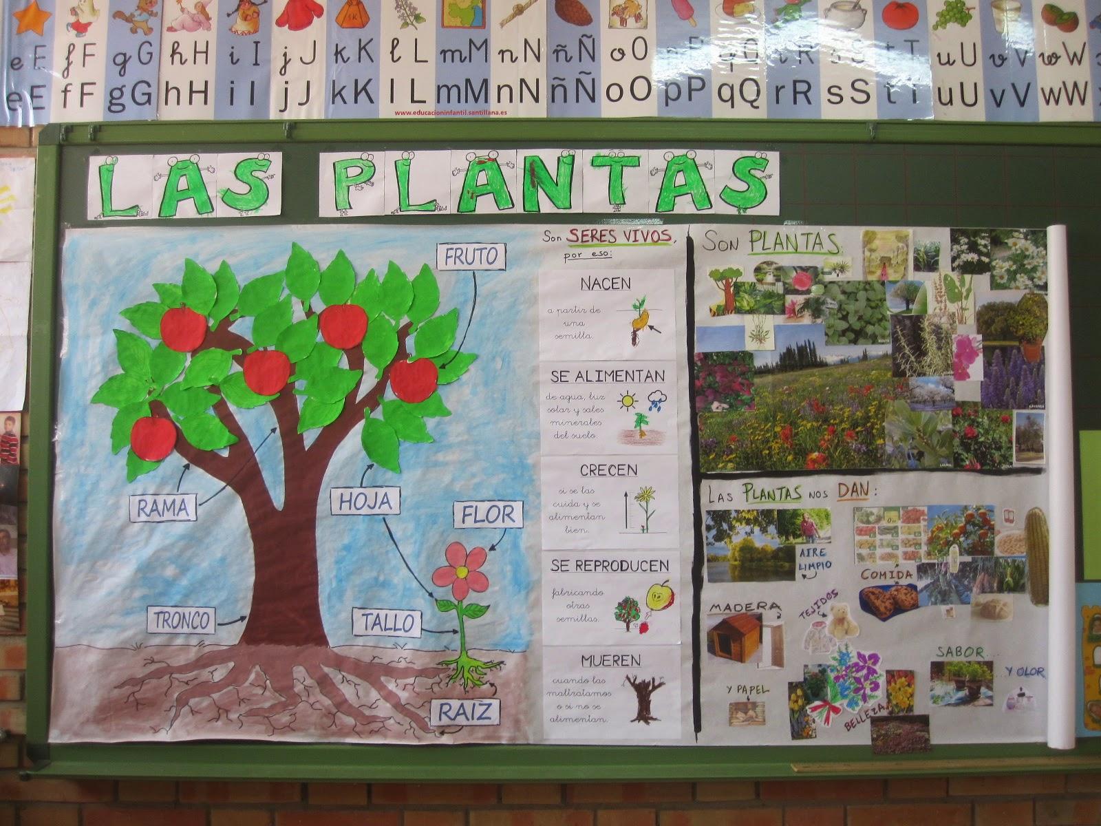 Pequefactoria Proyecto Las Plantas