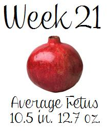 Pregnant 21 Weeks