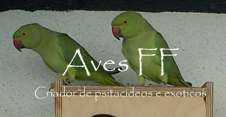 Aves FF