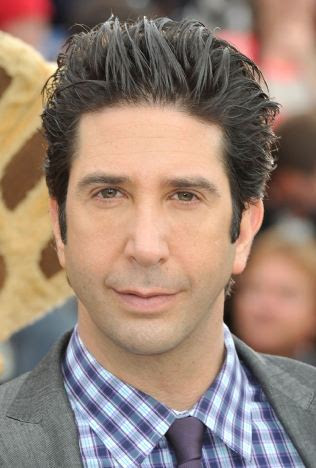 David Schwimmer, Ross from Friends, Handsome man, hollywood actor, hot male, good looking guy