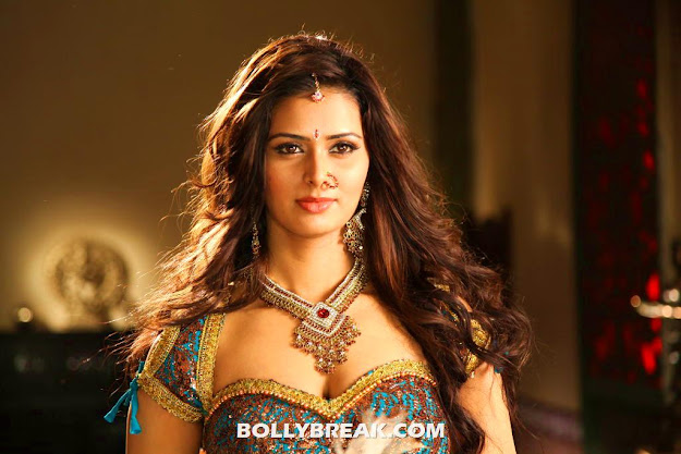 Meenakshi Dixit Hot Navel Photos 2012