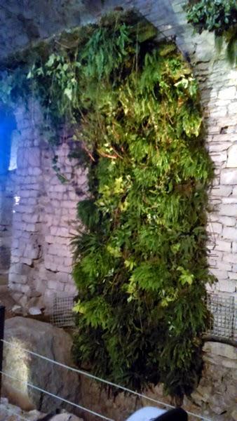 jardines verticales en temps de flors girona vertiflor On estructura jardin vertical
